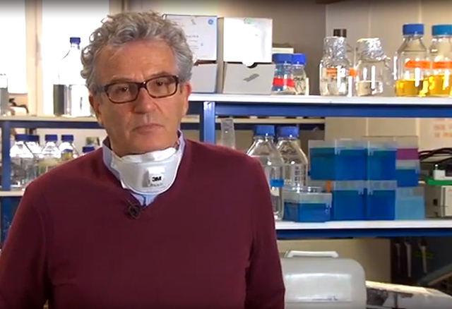 INVESTIGACIÓN | Un talaverano, al frente de la red de laboratorios para ayudar al diagnóstico de COVID-19 de la Complutense (VIDEOS)