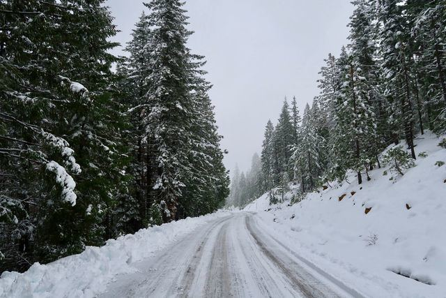 Conducción bajo cero: consejos para que el frío extremo no sea un inconveniente en el camino