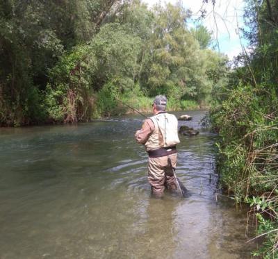 ACTUALIDAD | Si vas a cazar o pescar, recuerda...