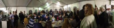 La I 'Feria del Marisco' se despide de Segurilla con gran éxito