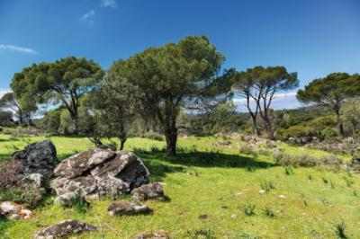 Aumenta el turismo rural en la provincia de Toledo, por encima de la media nacional