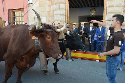 Comienzan a desfilar los primeros municipios en el Gran Cortejo de Mondas