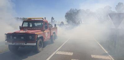 FOTOS | Así trabajaron los equipos de extinción en el incendio forestal en Pepino