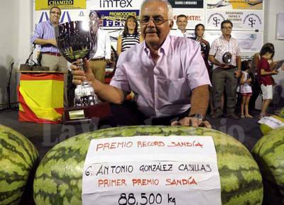 Impresionante récord con una sandía de 88,5 kilos en Villanueva de la Serena