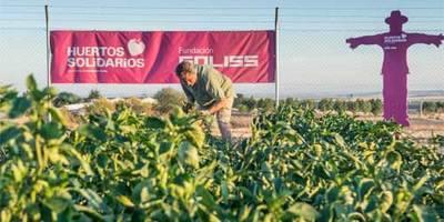 La Fundación Soliss muestra el fruto de su Red Regional de Huertos Solidarios (VIDEO)
