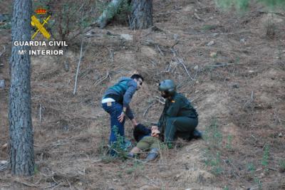 La Guardia Civil desmantela una plantación de marihuana en el Parque Natural de la Sierra de Norte de Guadalajara