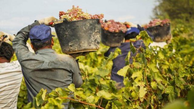 CCOO exige respeto de los derechos laborales y un empleo digno para las personas extranjeras