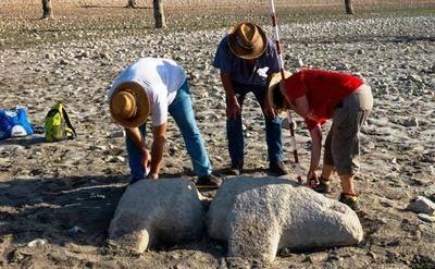 Aparecen esculturas de verracos en el embalse de Valdecañas
