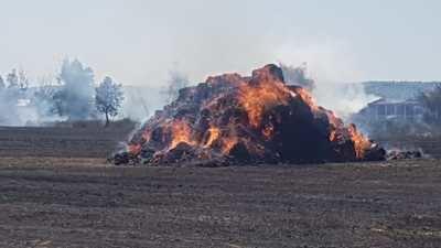 Diez hectáreas de cultivo arrasadas por las llamas a las afueras de Talavera