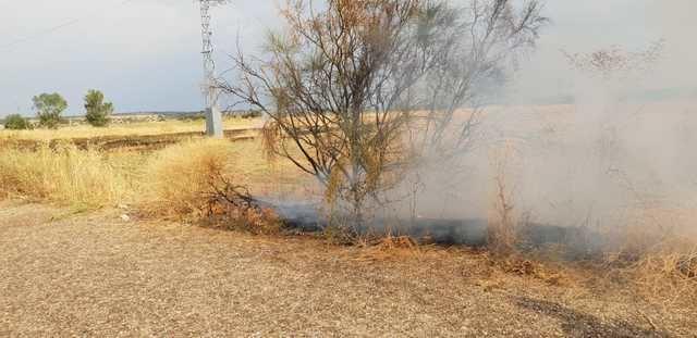 Un rayo origina un incendio en la A-5 cerca de Talavera