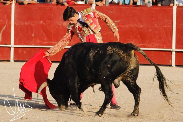 El novillero talaverano Guillermo Muñoz estará en la Feria Taurina de Santa Olalla el 5 de mayo
