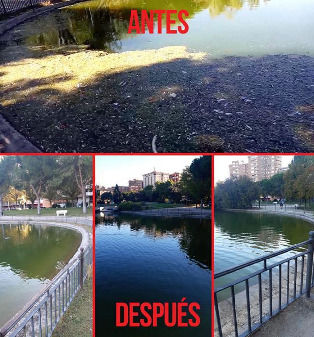 TALAVERA | Rápida actuación municipal para limpiar el lago de La Alameda por causa del viento
