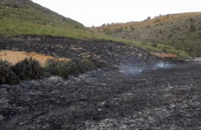 Fotografía de archivo de un incendio en Yeste