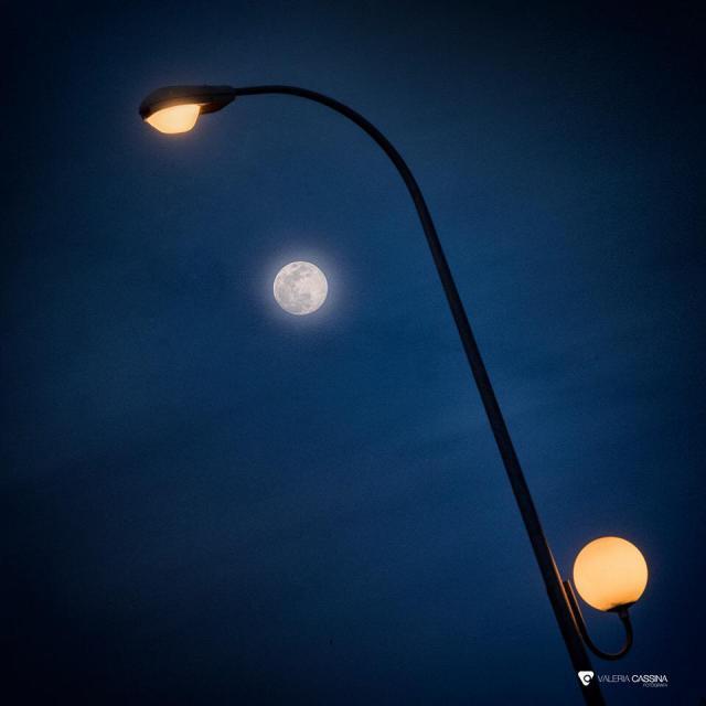 TALAVERA | 'Cuando la luna nos ilumina y une en la distancia', por Valeria Cassina