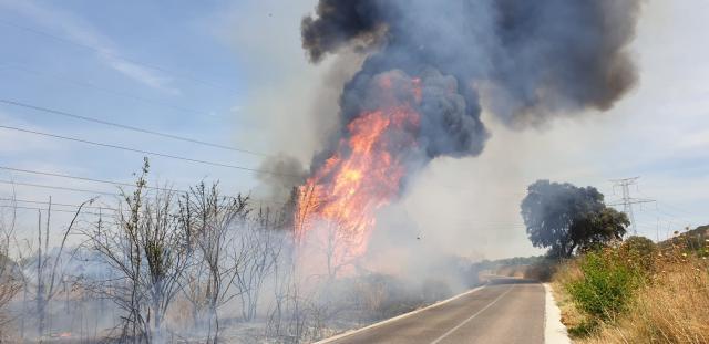CAZALEGAS | Lunes negro: fotos del incendio junto al embalse