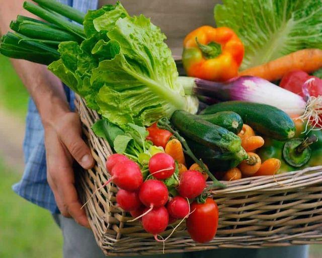 VÍDEO | CLM aprobará 35,2 millones en ayudas para la agricultura ecológica