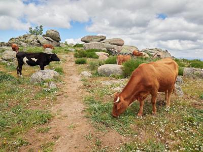 REGIÓN | Millones a la agricultura ecológica