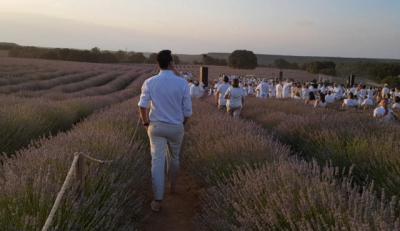 El cultivo de las aromáticas como fuente de riqueza en la Alcarria