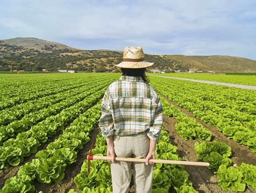 FADEMUR pide facilidades para las emprendedoras rurales