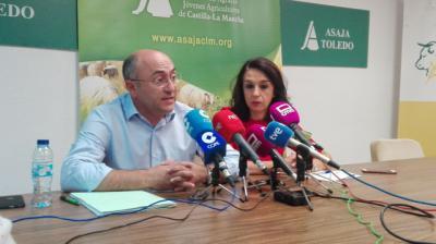 Asaja CLM presentará 'irregularidades' que se están cometiendo en el precio de la uva