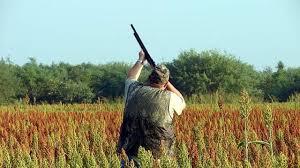 ¿Qué puedo cazar y cuándo en Castilla-La Mancha?