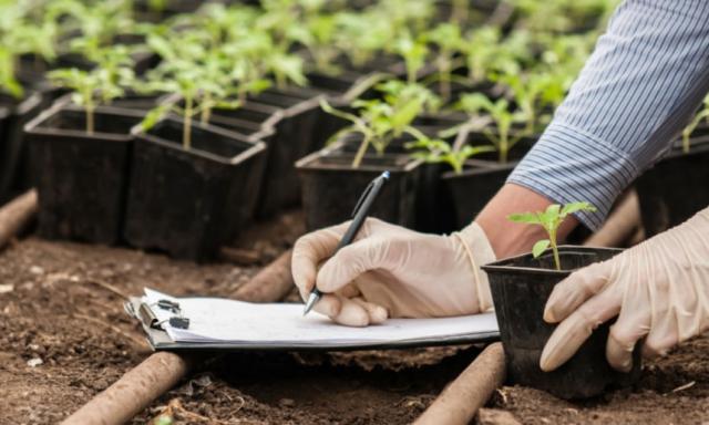El Ejecutivo regional destina un millón de euros en ayudas para la formación agraria
