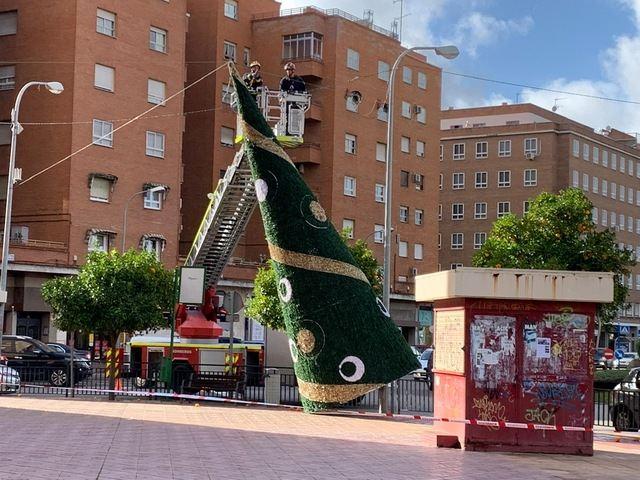 En la plaza de La Paz cayó el árbol decorativo.