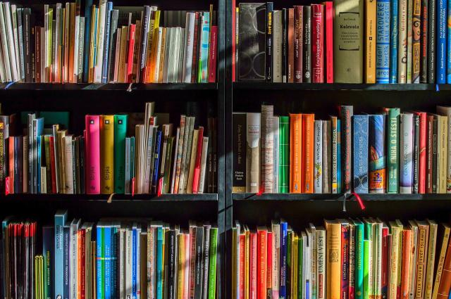 CULTURA | CLM compra 3.000 libros para distribuirlos en bibliotecas públicas