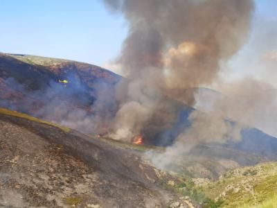 ÚLTIMA HORA (VIDEO) | Evolución favorable en los trabajos de extinción de los incendios en Cáceres