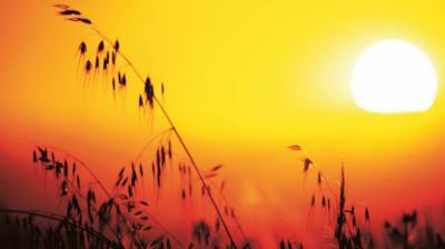 VERANO | Calor, mucho calor para este martes... hasta 40ºC
