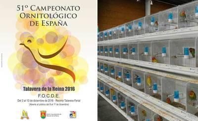 Talavera acogerá cuatro años más el Campeonato Ornitológico de España