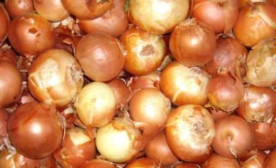 Se enfrenta a 26 meses de cárcel por no pagar más de 149.000 kilos de cebollas