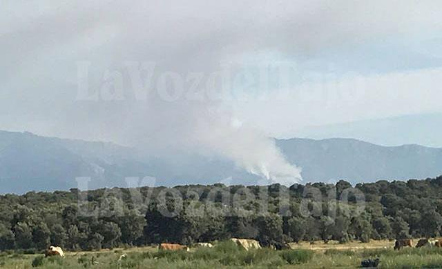 Declarado un importante incendio en el Hornillo (Ávila)