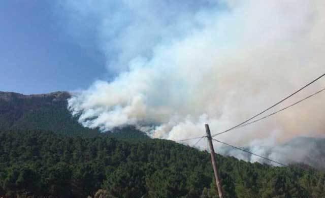 El fuego de Yeste, con 100 hectáreas arrasadas, cuenta con indicios de haber sido provocado