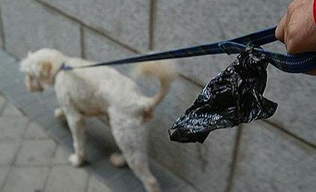 Multas de hasta 500 euros por no recoger los excrementos de los perros