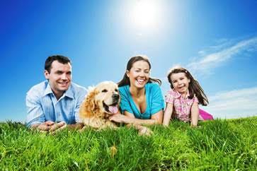 Consejos para disfrutar de unas buenas vacaciones con tu mascota