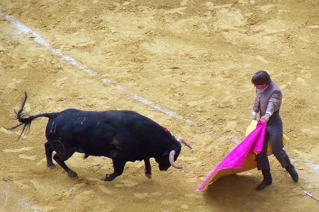 COVID-19 | PACMA: 'Celebrar festejos taurinos a puerta cerrada y sin público es ilegal'