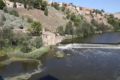 La plataforma de Toledo en Defensa del Tajo vuelve a manifestarse
