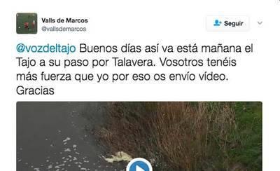 Nueva denuncia sobre el estado del Tajo a su paso por Talavera