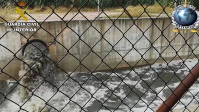 CONTAMINACIÓN | Una operación de la Interpol destapa más desaladoras ilegales