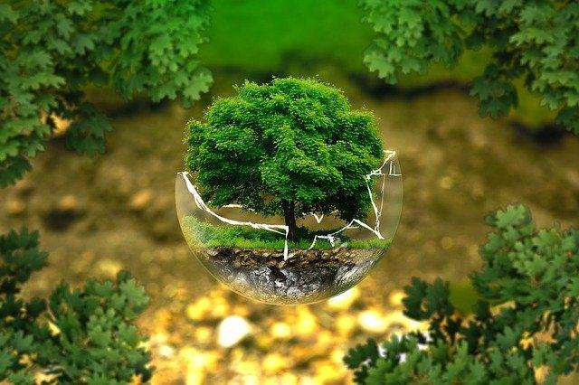 """Talavera """"cumple progresivamente"""" los Objetivos de Desarrollo Sostenible"""