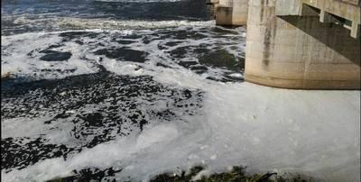 Nuevo episodio de espumas en el río Tajo a su paso por Toledo