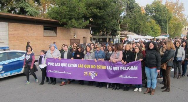Asociaciones y organizaciones feministas salen a la calle para mostrar su repulsa hacia la violencia machista