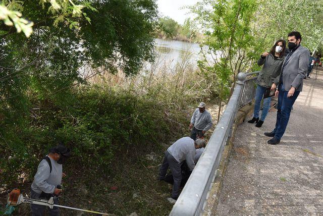 MOSQUITOS | Talavera adelanta dos meses los trabajos para prevenir la aparición de plagas