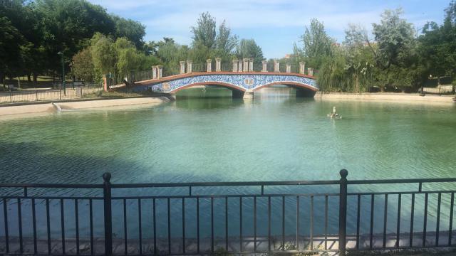 Así está nuestro lago ahora