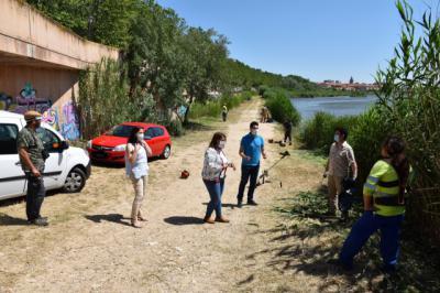 TALAVERA | Desbroce y nuevas fumigaciones para luchar contra los mosquitos