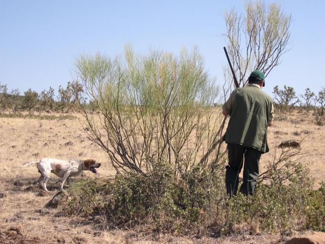 Publicados los precios para obtener los permisos de caza en la región