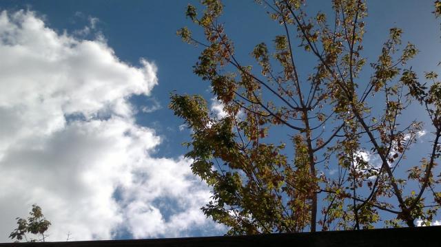 El fin de semana será seco, soleado y con temperaturas más propias del verano