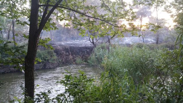 Extinguido el fuego registrado detrás de la Fábrica de Armas en Toledo