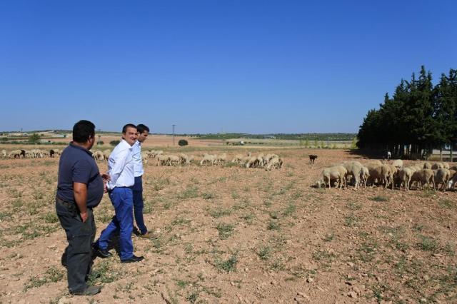 CLM abona 6,7 millones de euros para mejorar las explotaciones de agricultores y ganaderos